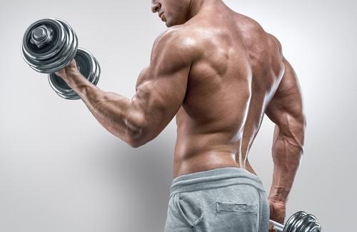 Muskelaufbau ernährung. Schneller muskelaufbau. Wie man muskeln aufbauen. Muskelaufbau produkte